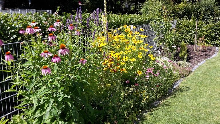 Janinas Garten